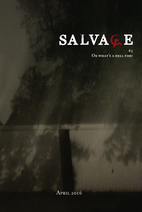 SalvageVol3Cover